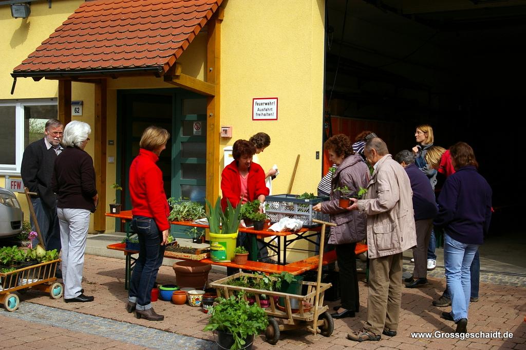 Pflanzentauschbörse 2013