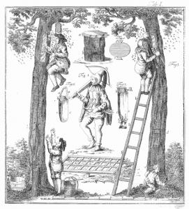 Zeidlerei – Historische Darstellung der Waldimkerei Waldzeidlerei