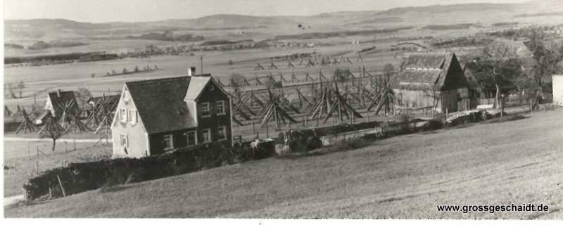 Blick auf das Schwabachtal ca. 1920, rechter Bildrand Anwesen alt 31/32, zur Verfügung gestellt von Ewald Glückert