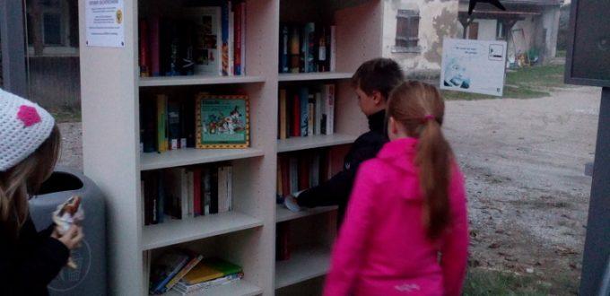 Das offene Bücherregal wird neugierig begutachtet....